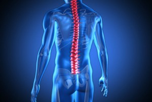 Keeping your spine healthy means maintaining its full range of motion, without discomfort.