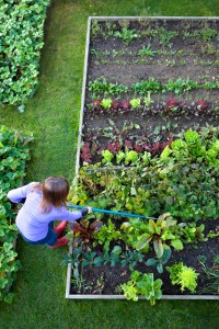 Gardening Ergonomics - Nashville TN - East End Chiropractic